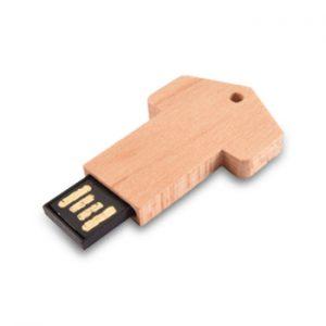 ecology-wooden-usb-product-c