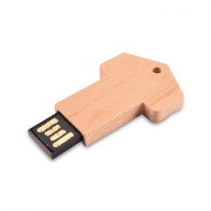 ecology-wooden-usb-product-e